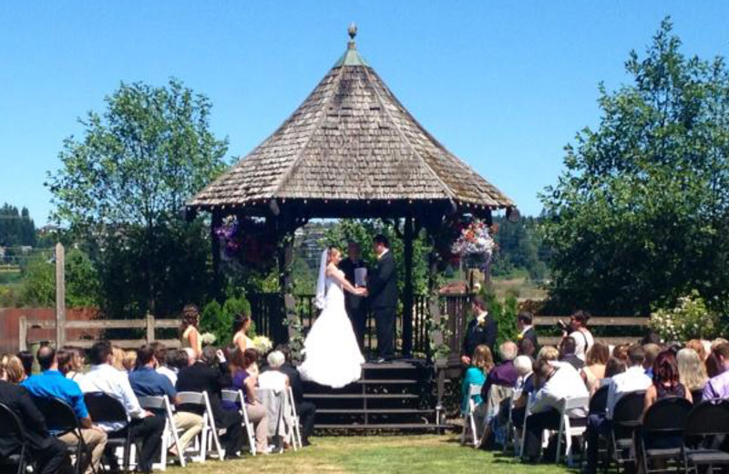 Wedding Ceremony at Old House Village Hotel and Spa