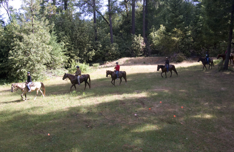 Horseback riding at Marble Mountain Guest Ranch.