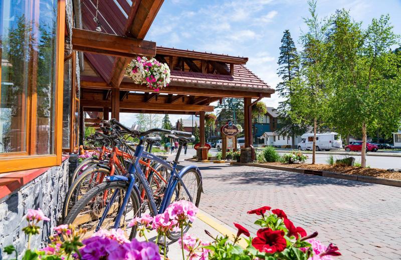 Bikes at Banff Ptarmigan Inn.