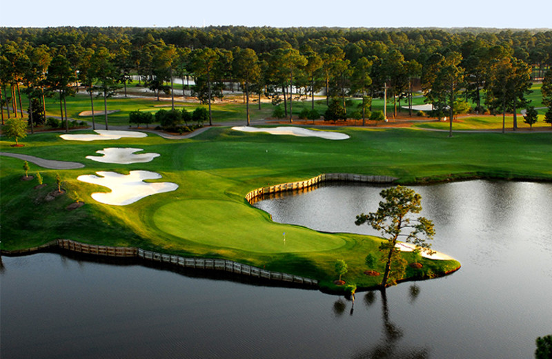 Golf course near Condo World.