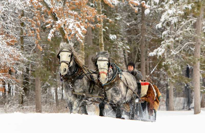 Sleigh ride at Grand View Lodge.