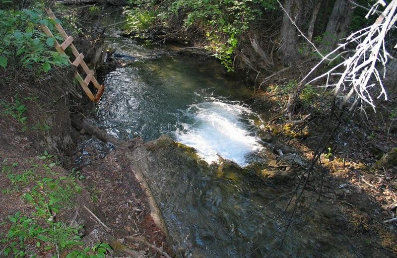 Hot springs at Windermere Creek Bed & Breakfast Cabins.