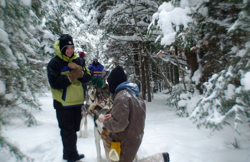 Dog sledding proposal at Gunflint Lodge.