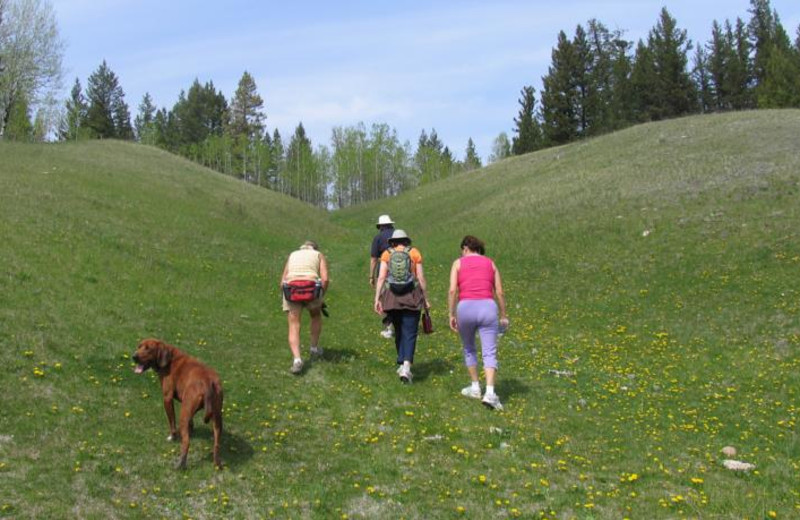 Hiking at The Hills Guest Ranch.