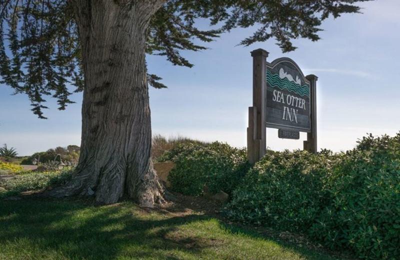 Welcome to Sea Otter Inn.
