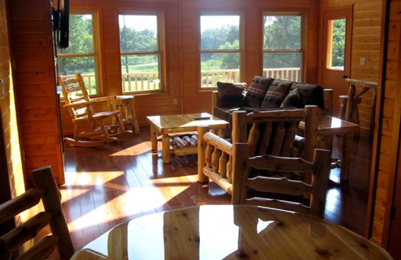 Beautiful view of the meadow and Cedar River with a gas fireplace, large deck and gas grill.
