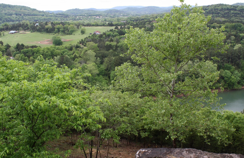 View from Arkansas White River Cabins.