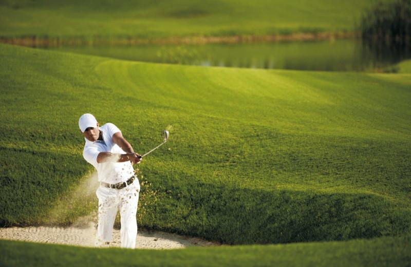 Golf courses near St. George Inn & Suites.