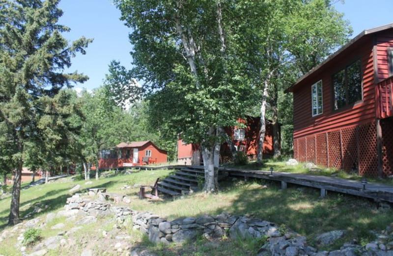 Cabins at Big Narrows Resort