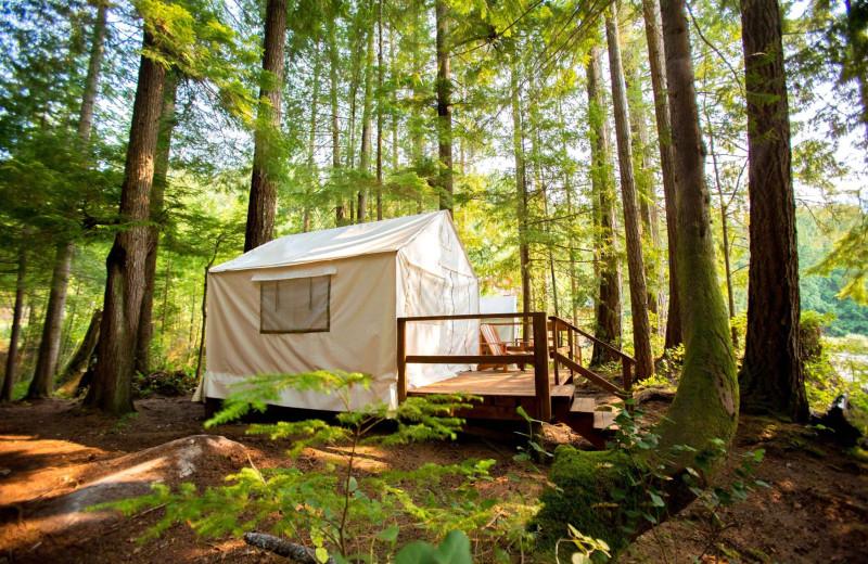 Yurt at Wilderness Resort & Retreat.