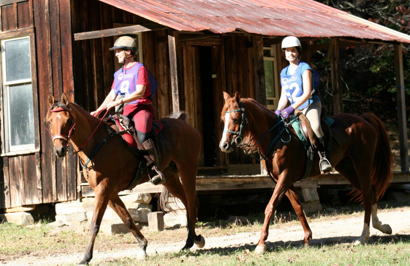 Bring your horse to Leatherwood Mountains Resort.