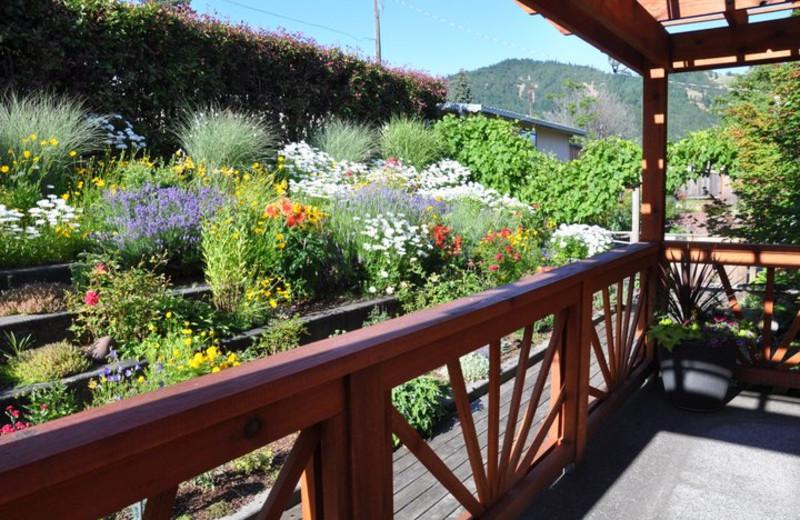 Garden view at Inn of the White Salmon.
