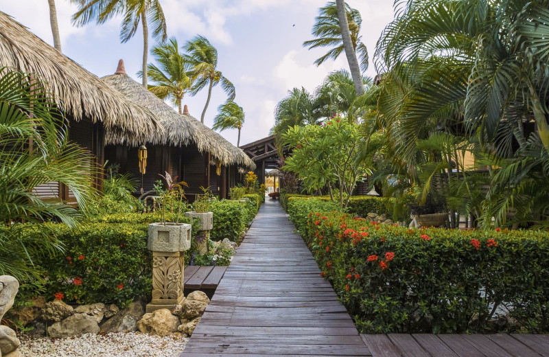 Exterior view of Manchebo Beach Resort & Spa.