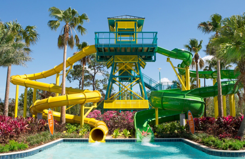 Water slides at The Grove Resort & Spa.