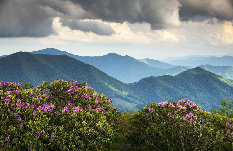 Mountain view at near Georgia Mountain Cabin Rentals.