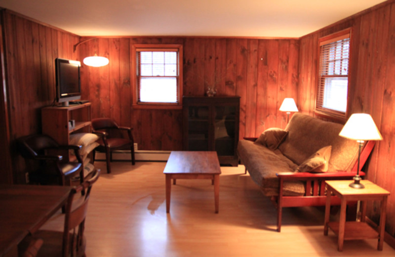 Cottage living room at Phoenicia Lodge.