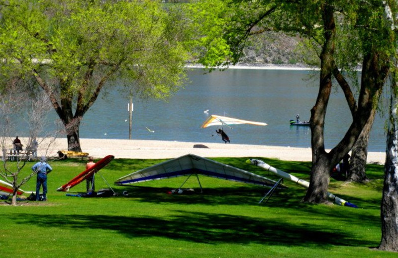 Kites flying at Lakeside Park at  Lakeside Lodge & Suites.