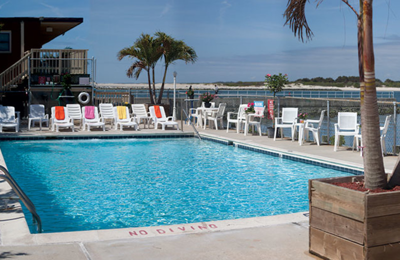 Outdoor pool at Oceanic Motel Ocean City.