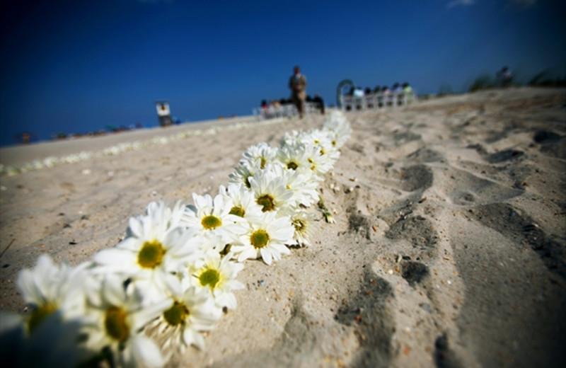 Beach wedding at Shell Island Resort.