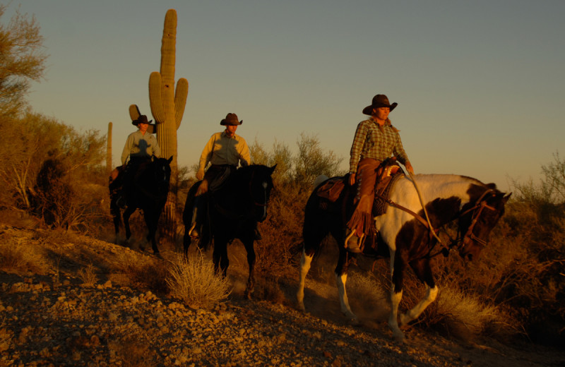 Kay El Bar Guest Ranch has tours and horseback riding lessons. Authentic & Intimate Western Dude Ranch