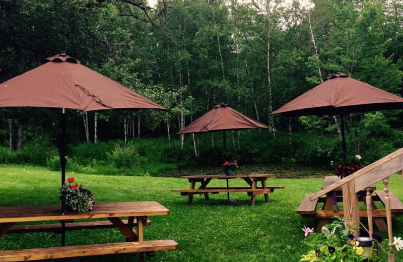 Picnic area at The Red Clover Inn & Restaurant.