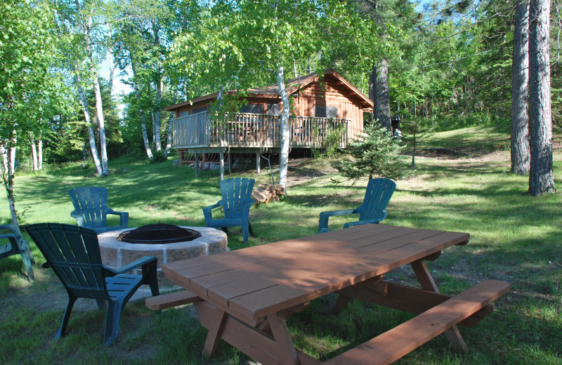 Fire pit and picnic area at River Point Resort & Outfitting Co.
