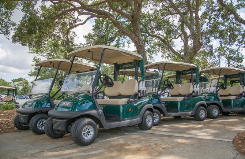 Golf carts at Sea Palms Resort.