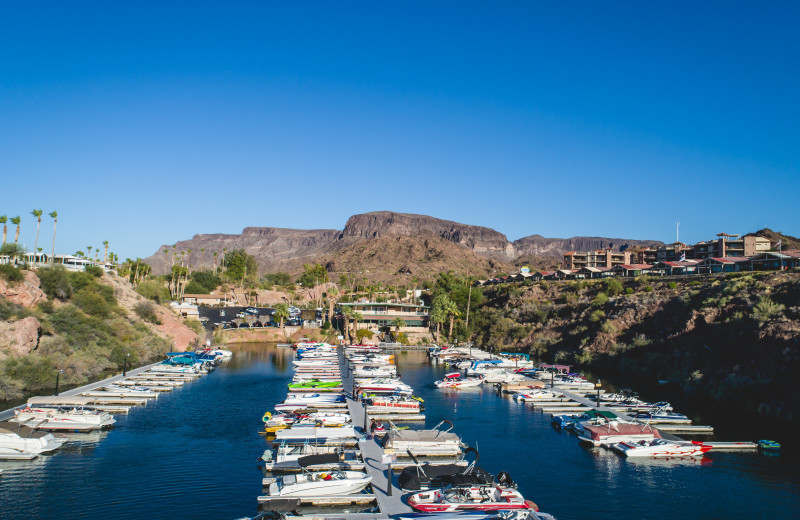 Marina at Havasu Springs Resort.