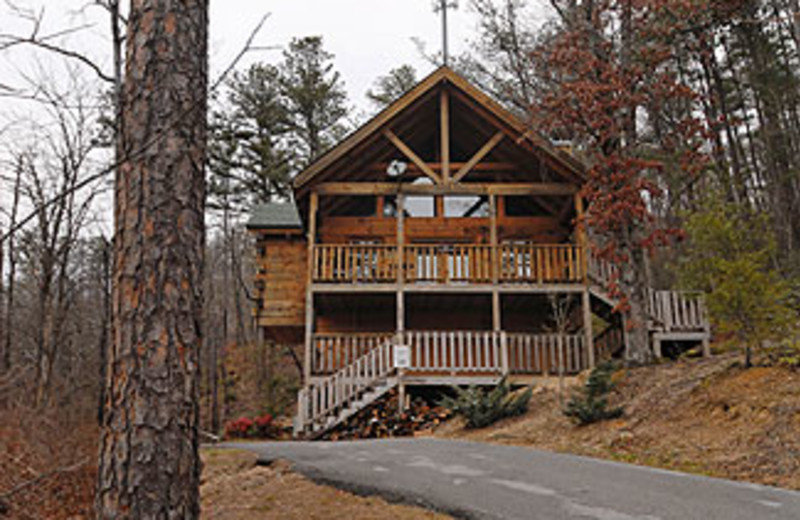 Pigeon Forge Vacation Rentals Cabin Bear Hearts 1 Bedroom Log