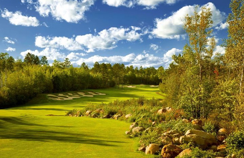 Golf course at Giants Ridge Golf and Ski Resort.