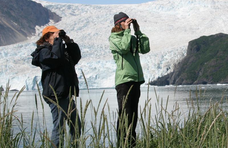 Bird watching at Kenai Fjords Glacier Lodge.