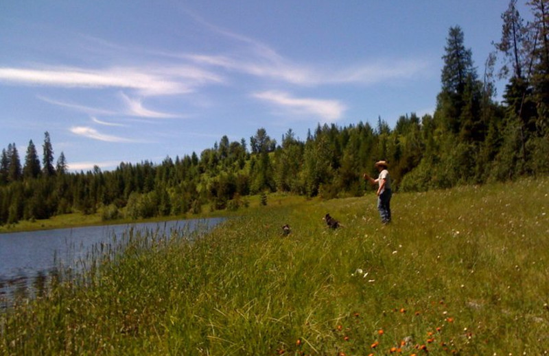 Fishing at Western Pleasure Guest Ranch.