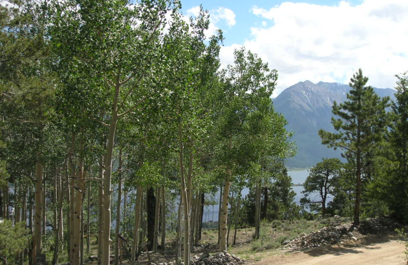 High Lake Haven's view of the lakes through the aspens