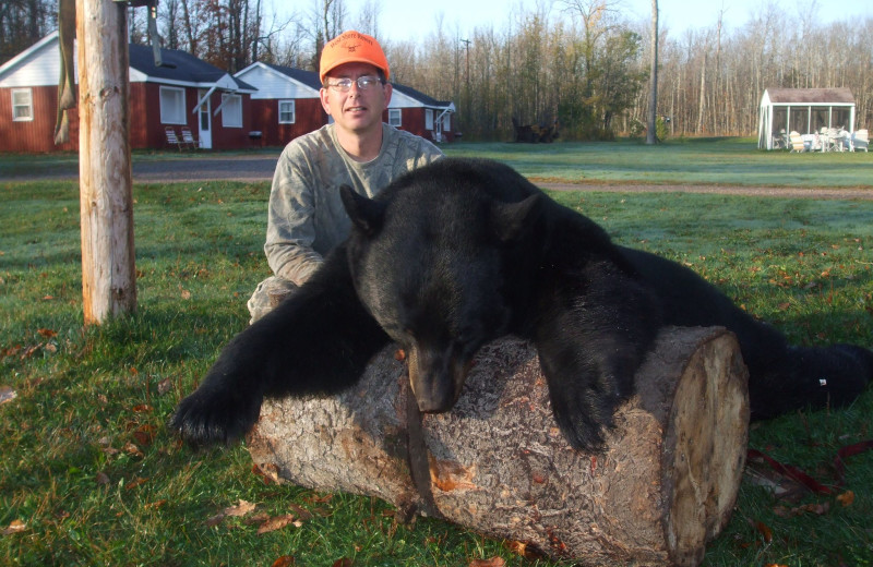 Bear hunting at The West Shore Resort.