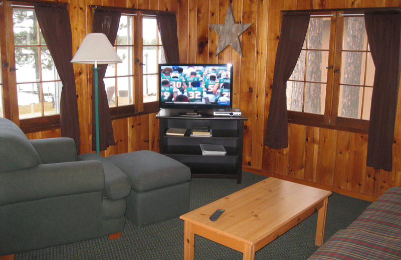 Rental living room at Harv's Vacation Rentals.