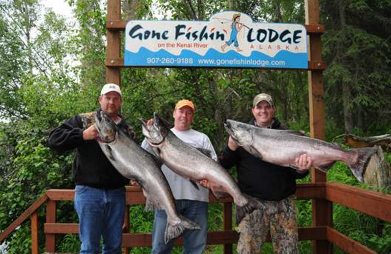 King salmon fishing at Gone Fishin' Lodge.