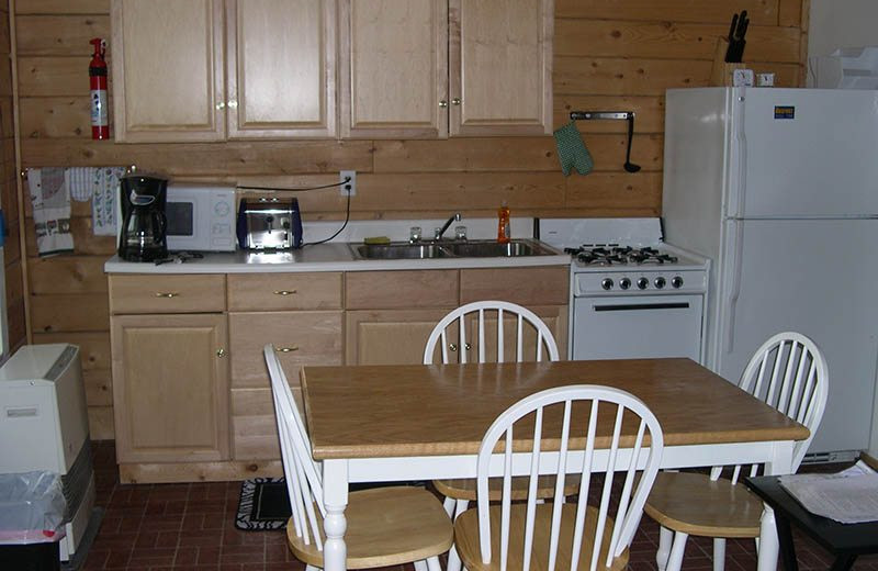 Cabin kitchen at Big Sky Charter & Fishcamp.