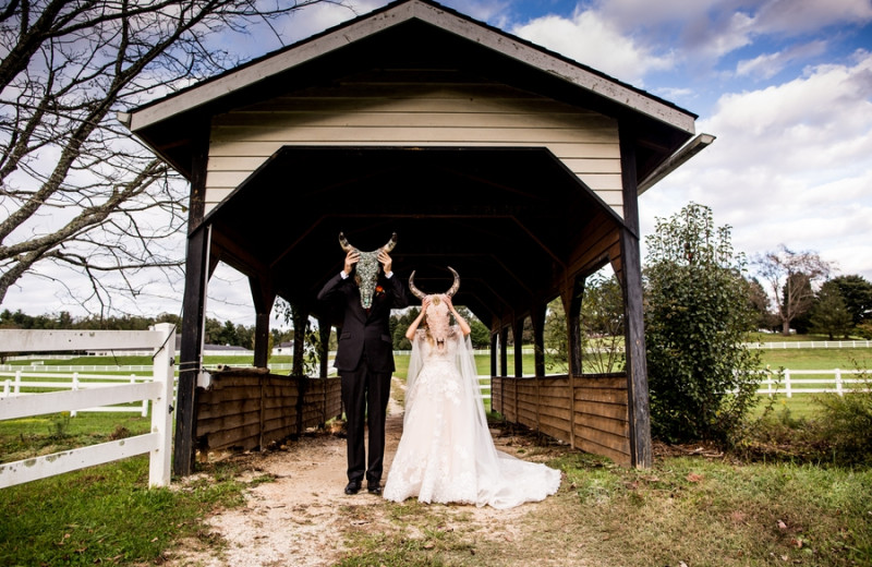 Wedding at The Horse Shoe Farm