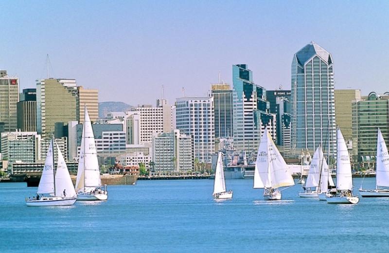 Sail boats in the bay at Loews Coronado Bay Resort.