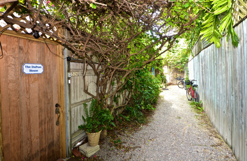 Rental yard at Key West Vacation Rentals.