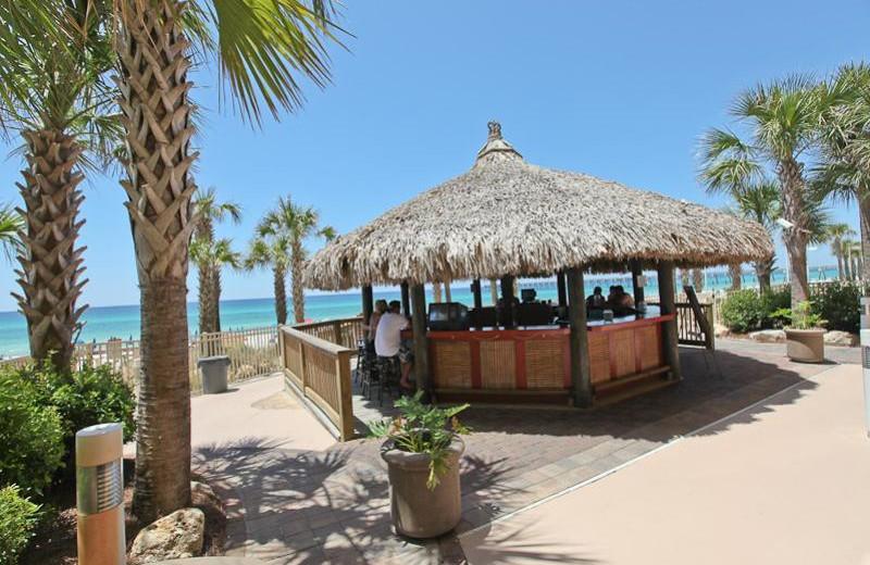 Pool bar at Calypso Resort & Spa.