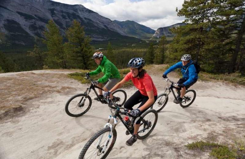 Biking near Banff Caribou Lodge & Spa.