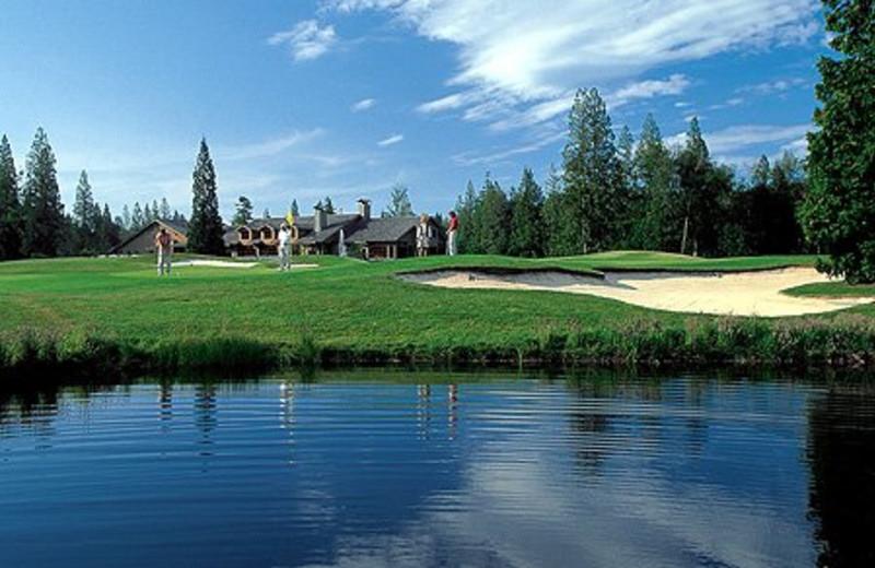 Golf Greens at Semiahmoo Resort