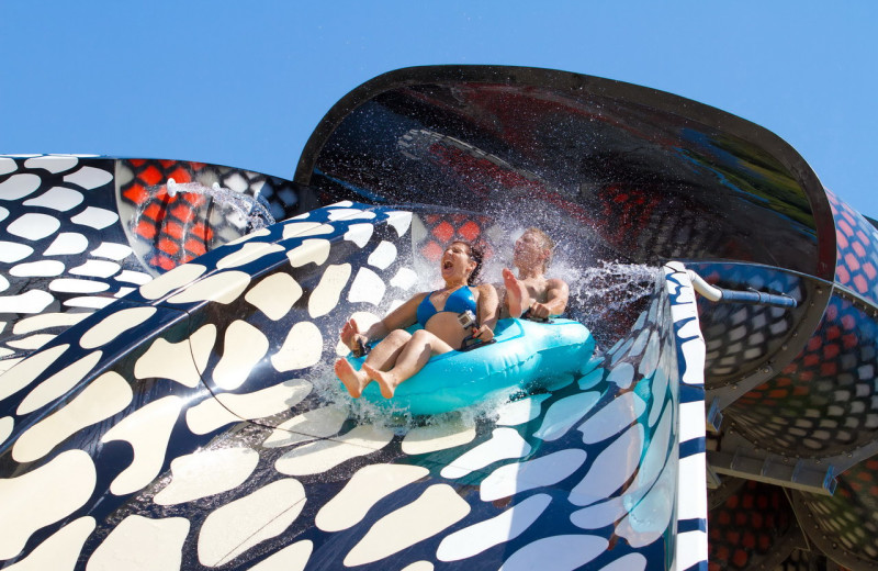 Water slide at Glamping Olimia Adria Village.