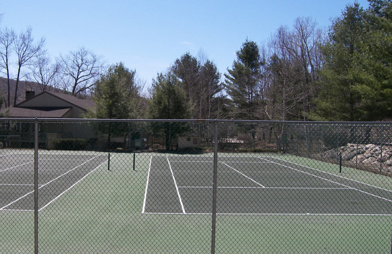 Tennis court at Loon Reservation Service.