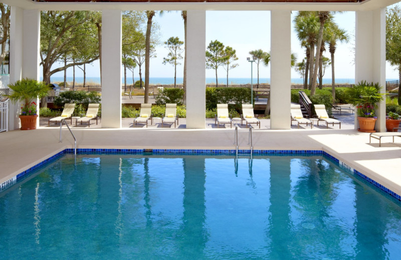 Pool View at  The Westin Hilton