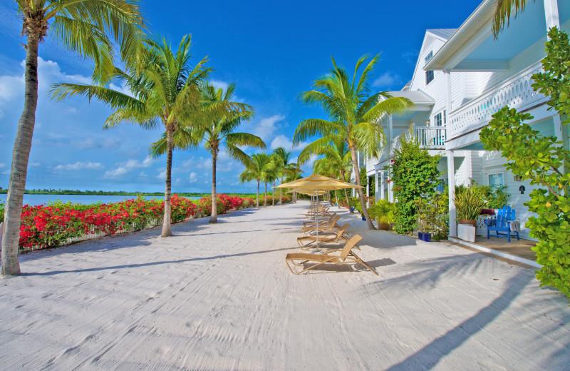 The beach at Parrot Key Resort.