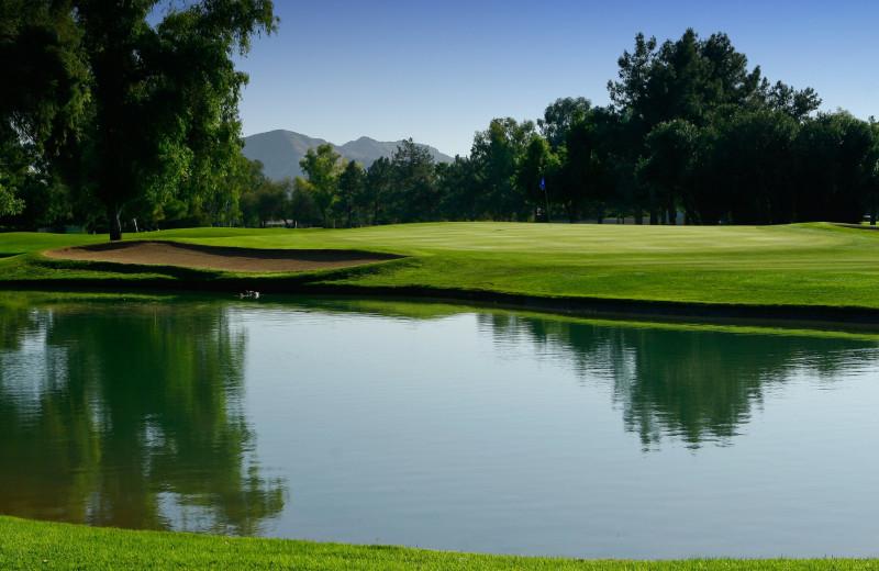 Golf course at Orange Tree Golf Resort.