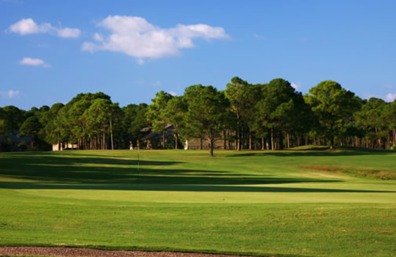 Golf green at Seascape Resort.