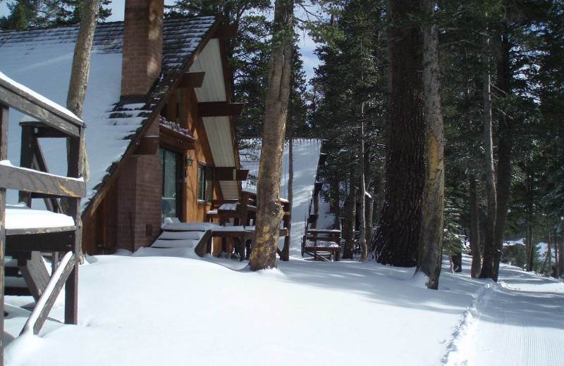 Winter time at Mammoth Mountain Chalets.